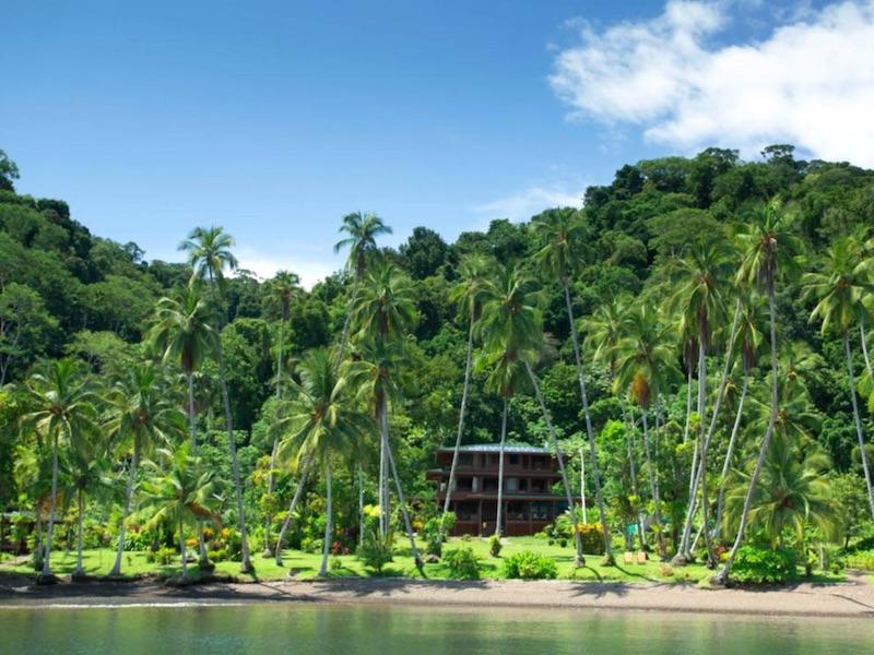 Costa Rica Mietwagen - Tropischer Wald