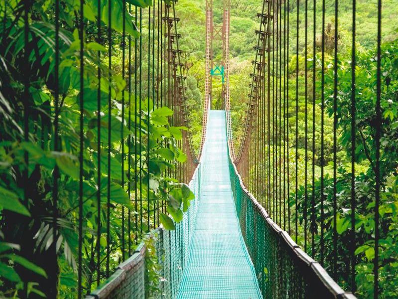 Costa Rica Auto Rundreise - Hängebrücken