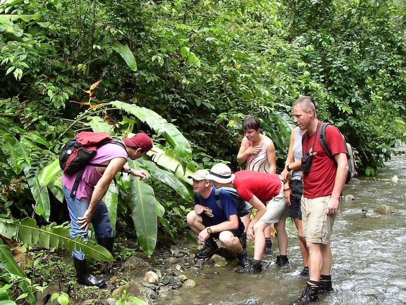 Corcovado Nationalpark - Hiking