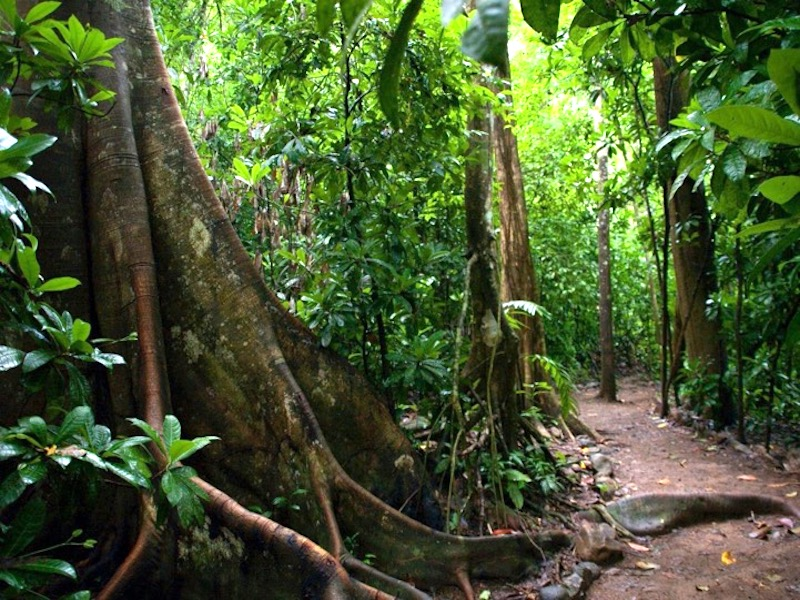 Costa Rica Informationen