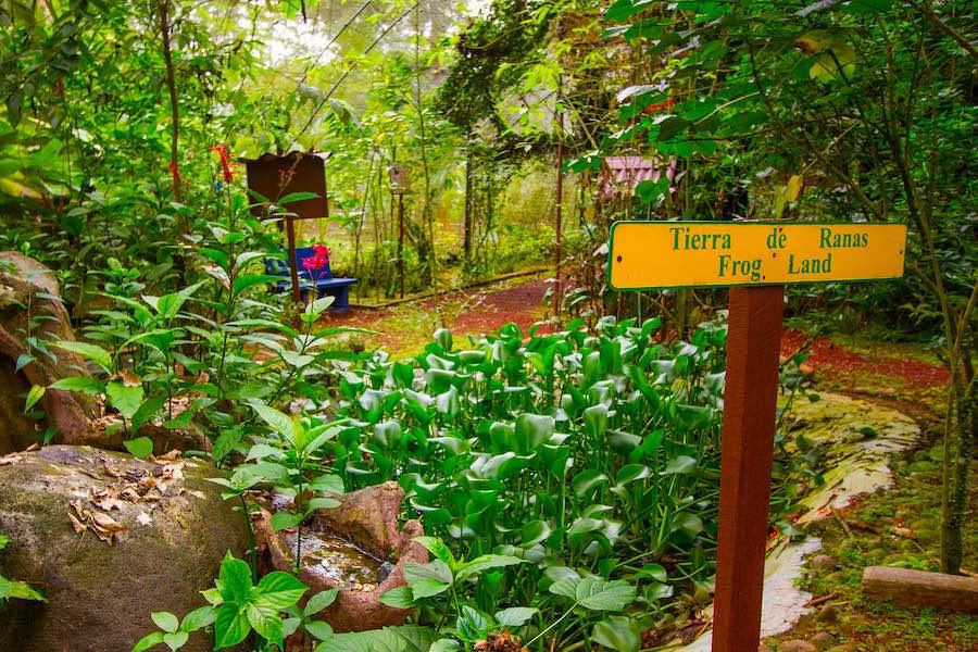 Mietwagen Tour Costa Rica La Quinta De Sarapiqui Outside